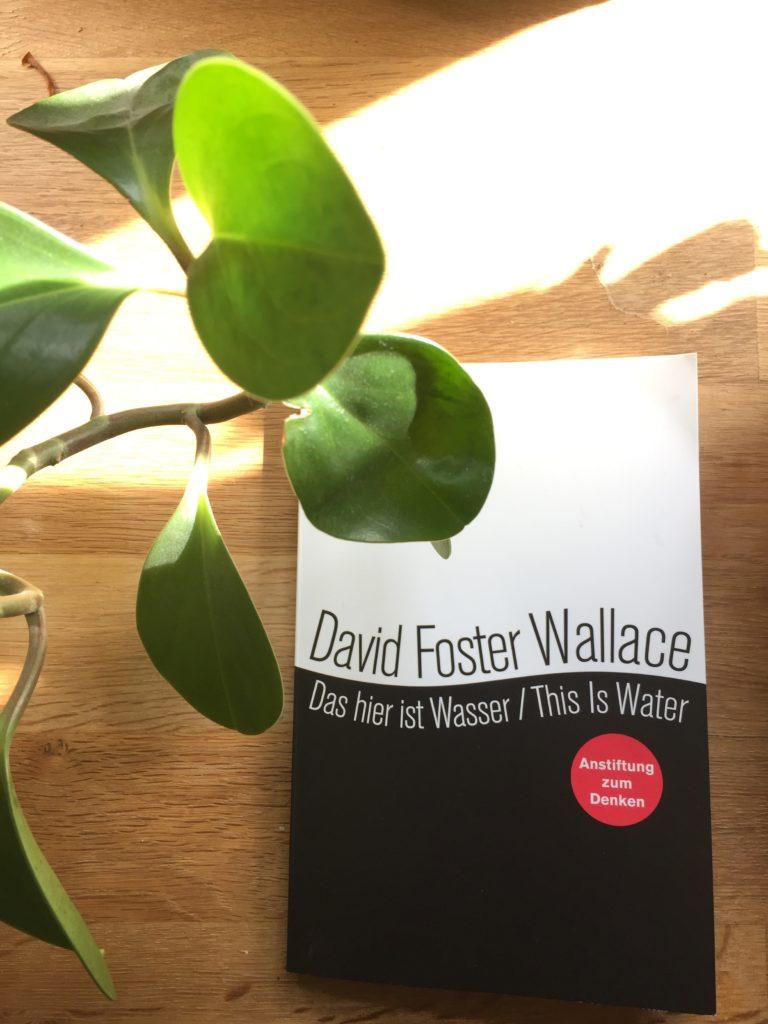 Das hier ist Wasser – David Foster Wallace