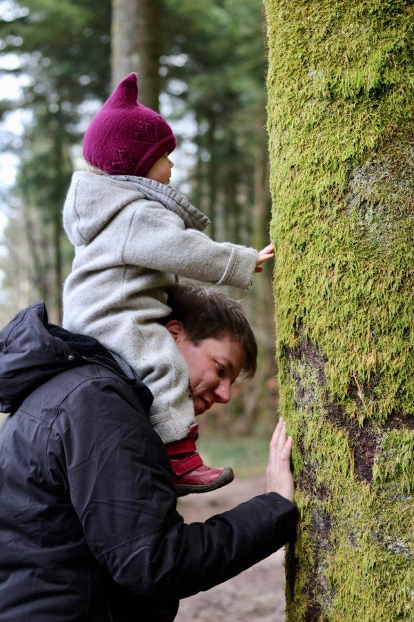 Familienurlaub im Center Parc Les trois Forets im Elsass, Kinderparadies mit Vor- und Nachteilen #centerparc #Familienurlaub #Frankreich